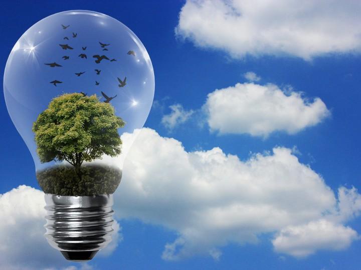La Mesa de la Energía analiza este curso el autoconsumo